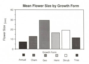3- Flower size by GF