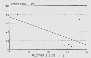 4- Flower size by plany hieght