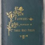 פרחים מיובשים 4ג