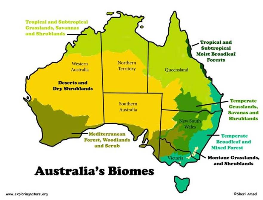 australia bioms