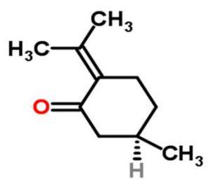 מולקולה של פולגון pulegone