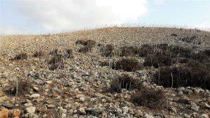 שדה החצבים ביודפת העתיקה. צילום: אבי שמידע ©