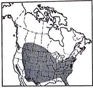 מפת התפוצה הטבעית של אדר מילני