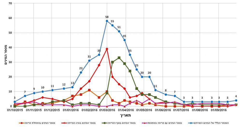 המספר הכללי של המינים בתחילת הפריחה, בשיאה, בסופה ובפריחה מטפטפת בחולות אביחיל בתקופה 1.10.2015 – 30.9.2016