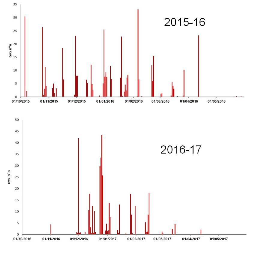 """איור 2. כמות המשקעים היומית (מ""""מ) בעין החורש בחודשים אוקטובר-מאי בעונות 2015-16 ו-2016-17. מקור הנתונים: מאגר הנתונים של השירות המטאורולוגי https://ims.data.gov.il/."""