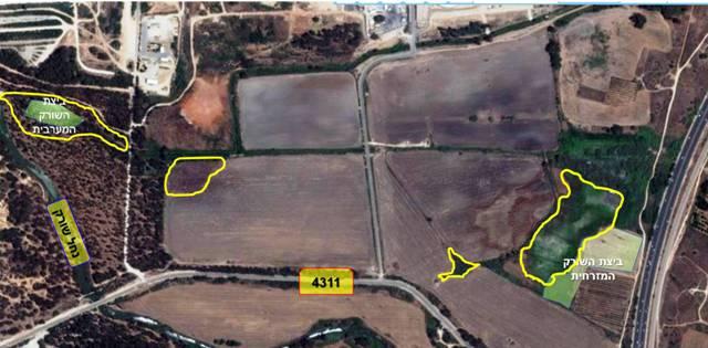 תמונה 1. מפת השטח בו נמצאו האוכלוסיות העיקריות של חומעת החוף (הריכוזים מוקפים בקו צהוב)