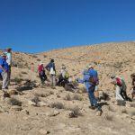 סיכום השתלמות כלנית בהר-הנגב 26-10-2017