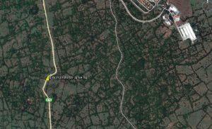 צילום אוויר של יער אודם (GoogleEarth)