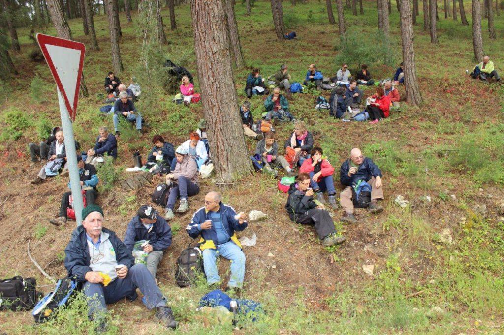 """ארוחת צהריים ביער קק""""ל ליד נחל מרעה. צילם: איתן שפירא©"""
