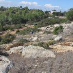 חלקת הר מלכישוע. צילם: איתן שפירא©
