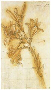 ציור של לאונרדו דה וינצ'י – שושן צחור