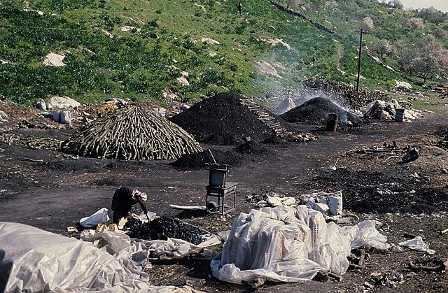 תעשיית פחמים ביעבד (צולם ב-1968). צילם: עוזי פז©