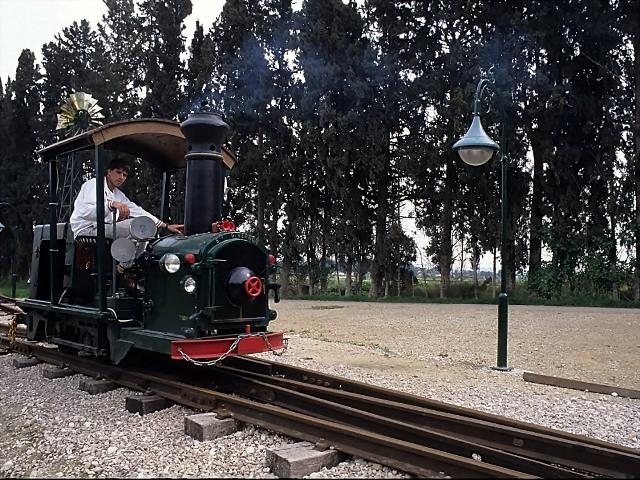שחזור של רכבת הפחמים בחצר ראשונים בעין שמר. צילם: עוזי פז©