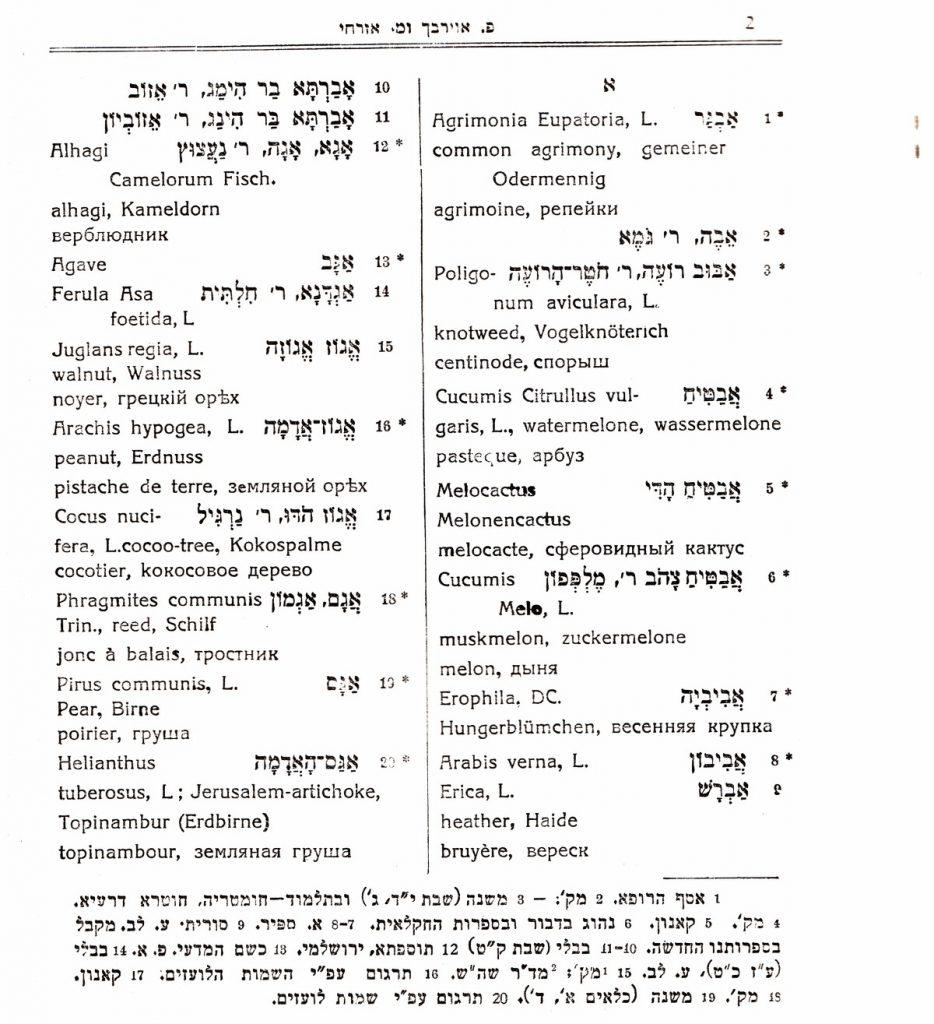 העמוד הראשון בילקוט צמחים. שימו לב להערות השוליים, מקור: אוסף המחבר.