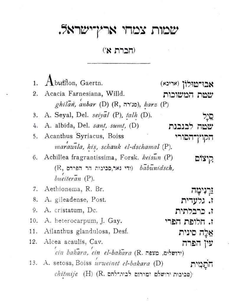 העמוד הראשון מתוך רשימת הצמחים של הראובני