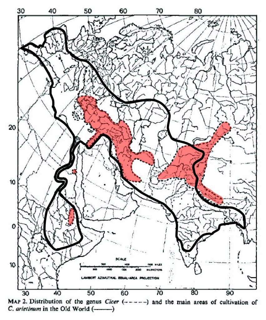 מפת התפוצה העולמית של הסוג חמצה. באדאדם תחום תפוצתם של המינים החד-שנתיים בסוג חמצה. מתוך Marsen 1972