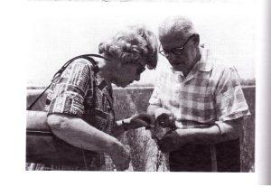 הזוג בויקו בוחן את צמחי הסמר, 1966