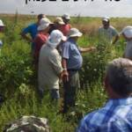 7 ירבוז הגדות 2013 סיור אגודת עשבים שוטים ב.רובין